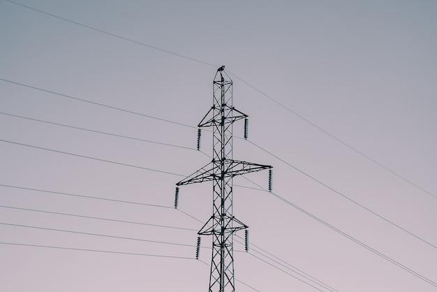 Stromleitungen post hautnah