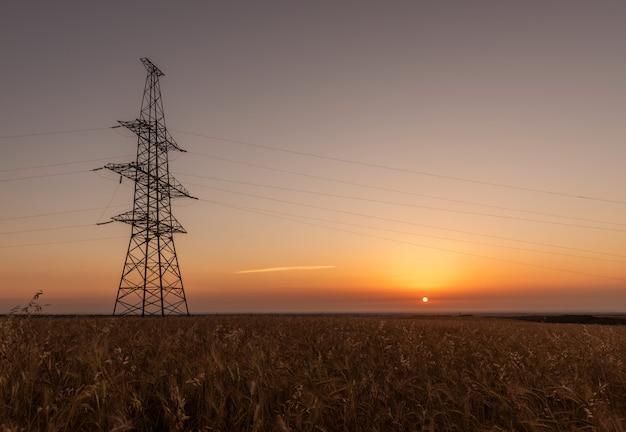 Strommast auf weizenfeldern bei sonnenaufgang