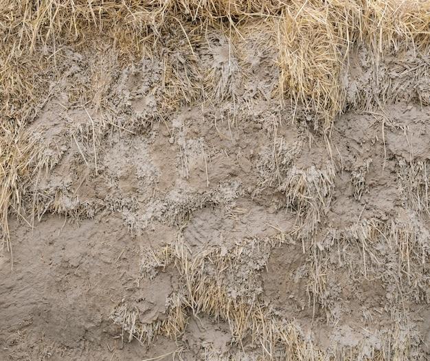 Struktur des lehms mit strohwand