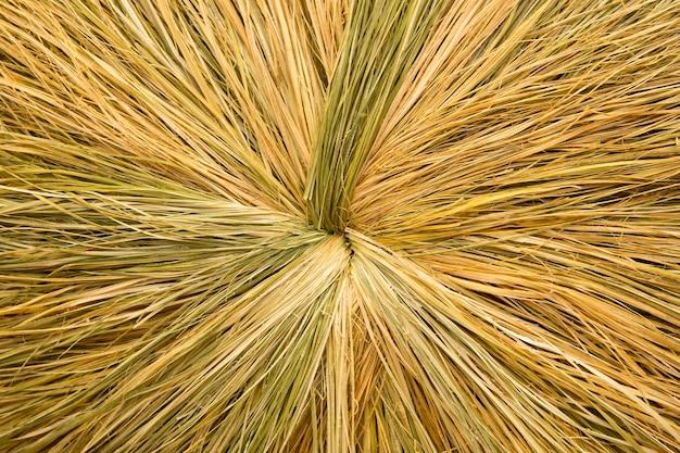 Strukturierter abstrakter natürlicher hintergrund aus holz oder holz getrocknetem strohgras oder rundem heumuster