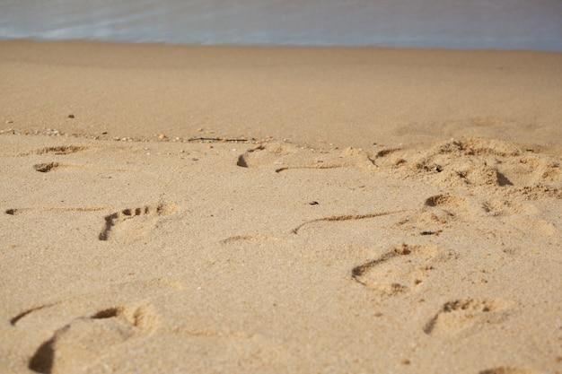 Strukturierter nasser sandstrandhintergrund
