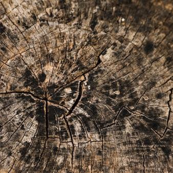 Strukturiertes detail des verwitterten stumpfes