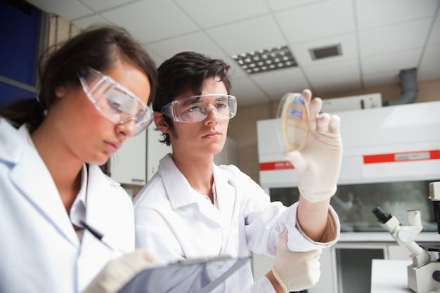 Studenten in der wissenschaftsklasse, die eine petrischale betrachtet