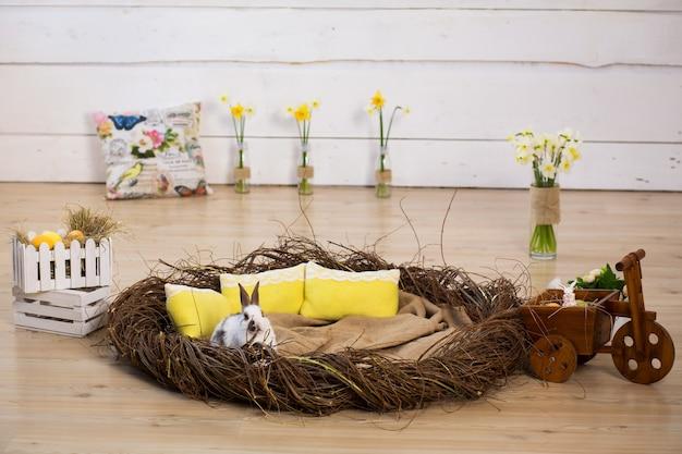 Studio ostern dekorationen. weißer flauschiger osterhase, der in einem großen nest vor dem hintergrund einer weißen wand sitzt.