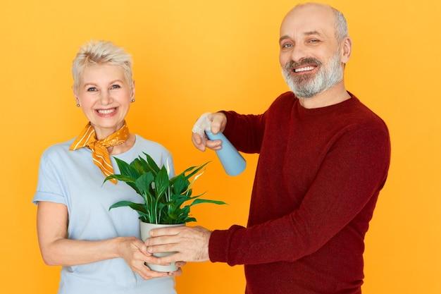 Studioaufnahme der schönen reifen frau, die zimmerpflanze hält, während ihr hübscher bärtiger älterer ehemann flaschenspray hält, seine grünen blätter besprenkelnd, lächelnd