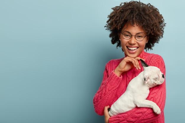 Studioaufnahme des optimistischen afroamerikanischen mädchens berührt sanftes kinn, gekleidet in rosa pullover