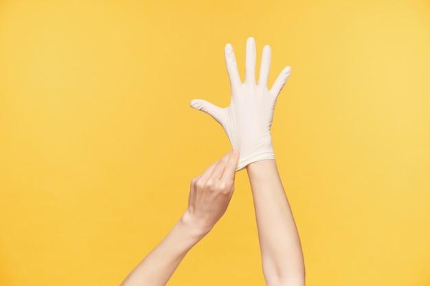 Studiofoto der hände der jungen angehobenen frau, die über orange hintergrund aufwirft, alle finger getrennt hält, während mit der anderen hand weißer gummihandschuh aufgesetzt wird