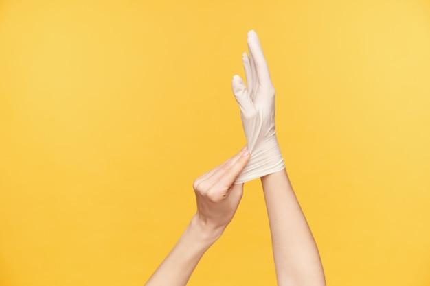 Studiofoto der hände der jungen hellhäutigen frau, die über orange hintergrund lokalisiert werden, während auf weißem gummihandschuh versucht wird. hände und gestik