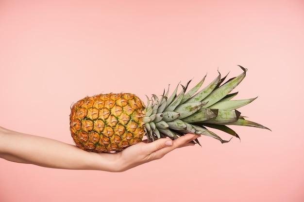 Studiofoto der saftigen frischen ananas, die horizontal auf der handfläche der eleganten erhabenen frau liegt, während sie über rosa hintergrund aufwirft. konzept für frisches obst und essen