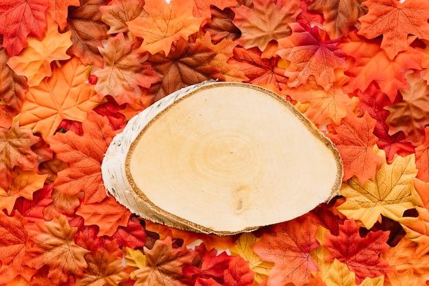 Stück birkenbaum, der auf blätter legt
