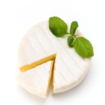 Stück camembertkäse lokalisiert auf weißer oberfläche. von oben gesehen.