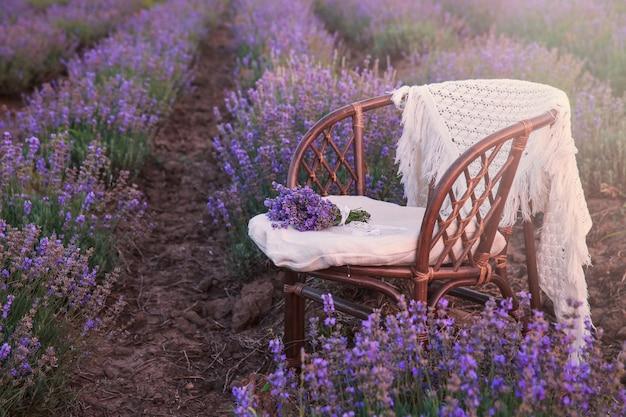 Stuhl in lavendelfeldern