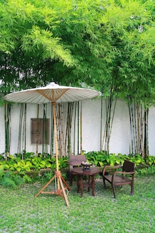 Stuhlsatz und regenschirm im garten, chiang mai, thailand
