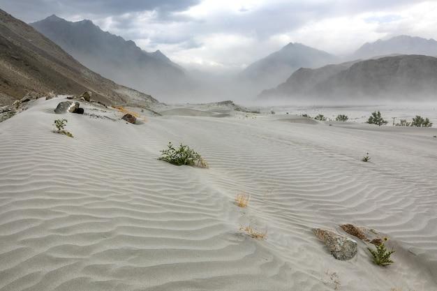 Sturm in wüstensanddünen