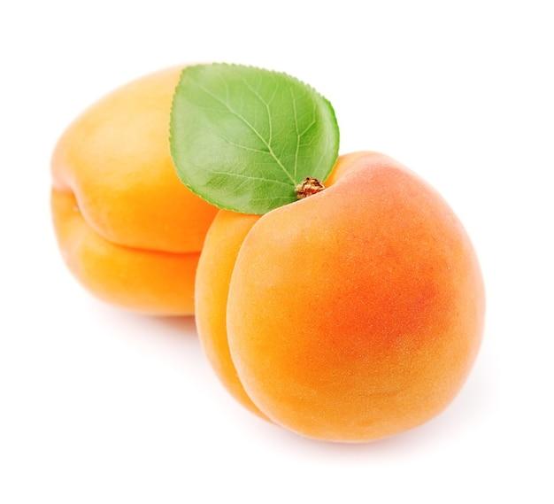 Süße aprikosenfrüchte mit blättern