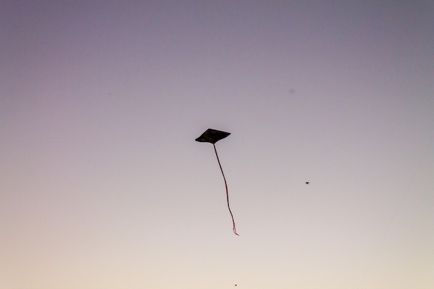 Süße drachen, die über den sonnenuntergangshimmel fliegen