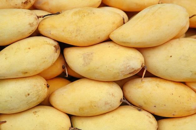 Süße gelbe spezies des mango-honigs von thailand