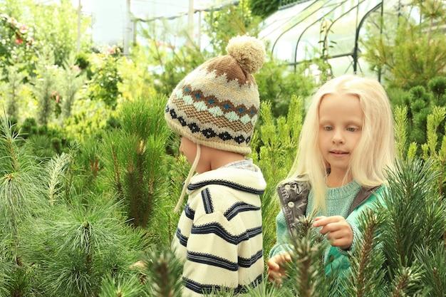 Süße kinder auf dem weihnachtsbaummarkt
