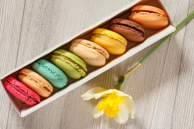 Süße macarons-kuchen unterschiedlicher farbe in weißem karton mit frischer gelber narzissenblume auf grauem holzbrett. ansicht von oben