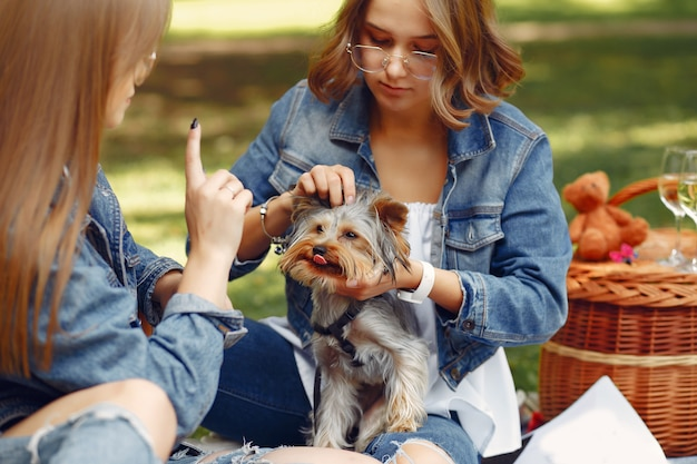 Süße mädchen in einem park spielen mit kleinen hund