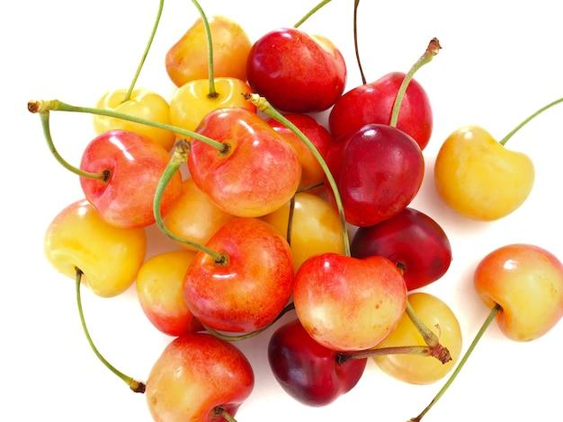 Süße und gesunde regnerischere kirschen auf weißem hintergrund, frische früchte