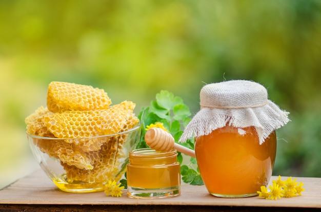 Süßer honig, kammstücke und honigschöpflöffel auf verschwommenem garten. honig tropft vom honigschöpflöffel