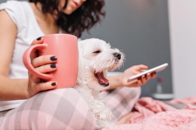 Süßer kleiner weißer hund, der auf knien junge frau im pyjama gähnt, der auf bett mit einer tasse tee kühlt. genießen sie komfort mit haustieren, fröhliche stimmung