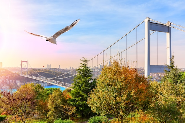 Sultan fatih mehmet-brücke, blick vom park, istanbul.