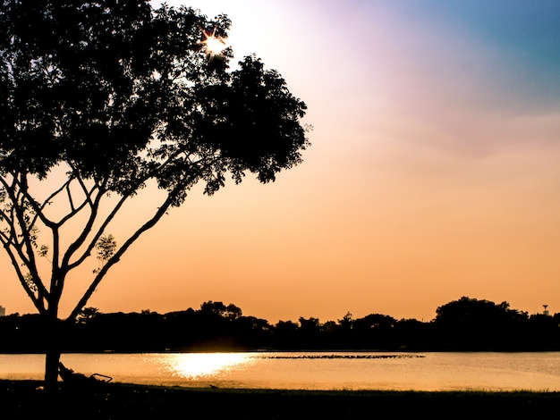 Sun-einstellung über einem ruhigen see unter einem baumschattenbildhintergrund romantischer moment