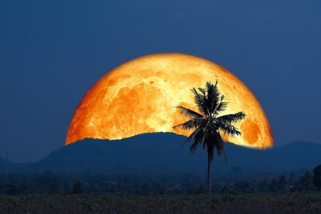 Super blutmond und silhouette kokospalme berg am nachthimmel