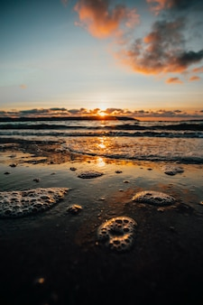 Super nahaufnahme einiger gezeiten mit blasen am strand während eines super bunten sonnenscheins