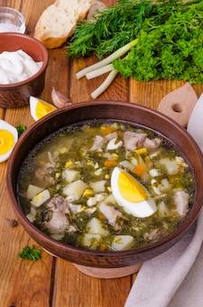 Suppe mit frischen kräutern, gemüse und eiern. ein traditionelles russisches und ukrainisches gericht.