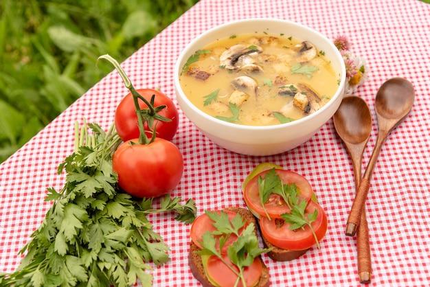 Suppe mit pilzen und sandwiches in der natur
