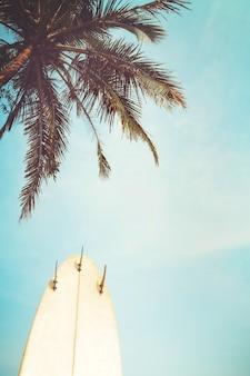 Surfbrett mit palme in der sommersaison. vintager farbton