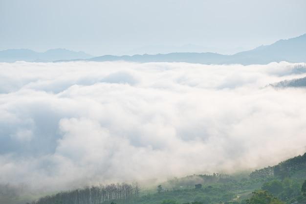 Surreale landschaft des morgennebels. morgenwolken bei sonnenaufgang. landschaft von nebel und bergen von nordthailand.