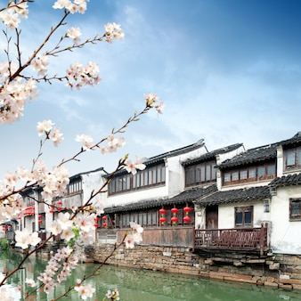 Suzhou-alte stadtnachtansicht