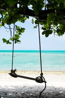 Swing hängt an einem baum neben dem strand