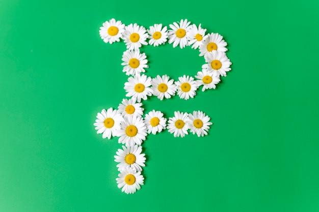 Symbol des russischen rubels aus weißen gänseblümchen