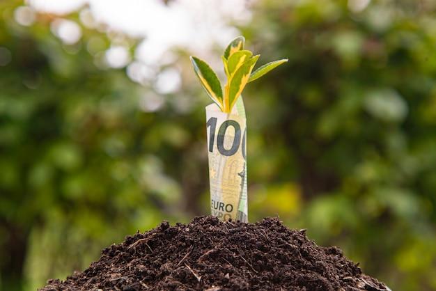 Symbol für wirtschaftswachstum: hundert-euro-banknote mit einer pflanze oder einem blatt, das aus der erde mit grünem, verschwommenem hintergrund wächst