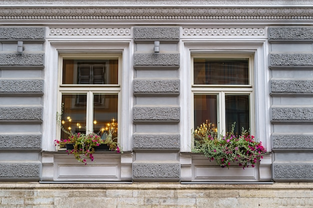 Symmetrische fenster mit pflanzen und blumen an einer klassisch anmutenden fassade.