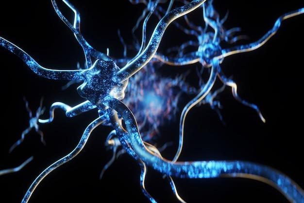 Synapse und neuronen im menschlichen gehirn