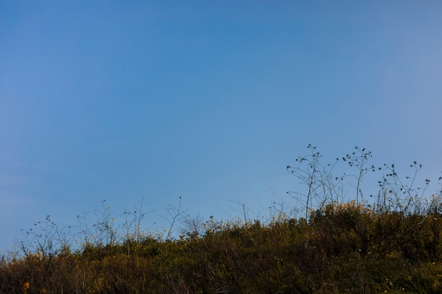 Szenische ansicht der landschaft gegen blauen himmel