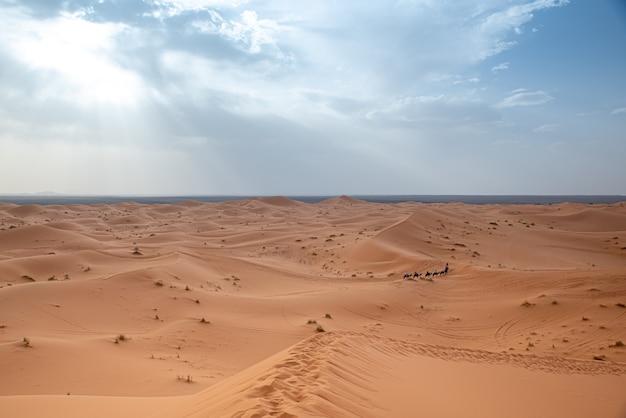 Szenische ansicht der sahara-wüste in marrakesch