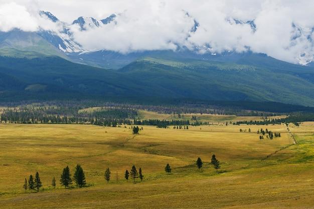 Szenische ansicht der schneebedeckten nord-chuya strecke in den altai bergen am sommer, sibirien, russland