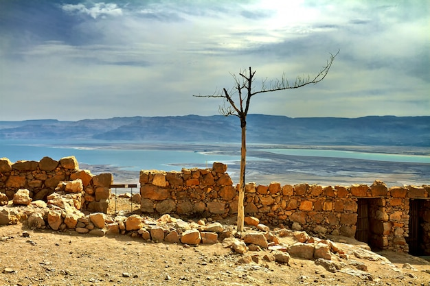 Szenische ansicht des masada bergs in der judean wüste nahe totem meer, israel.