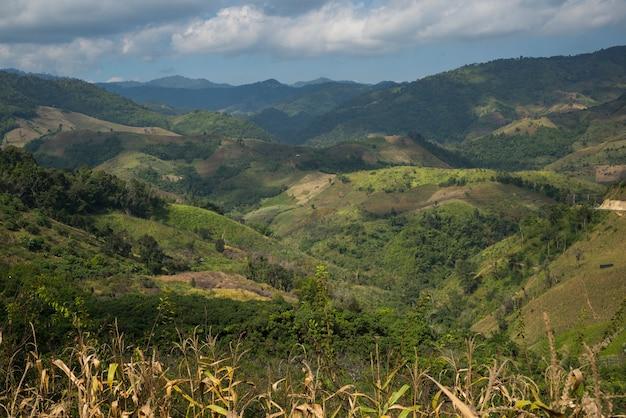 Szenische ansicht von bergen, chiang rai, thailand