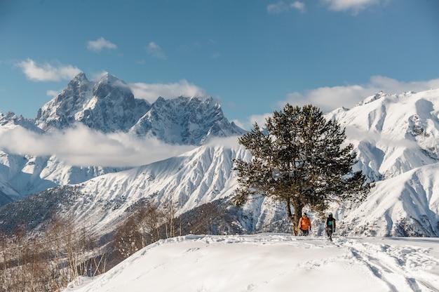 Szenische ansicht von den snowboardreitern, die nahe dem baum stehen