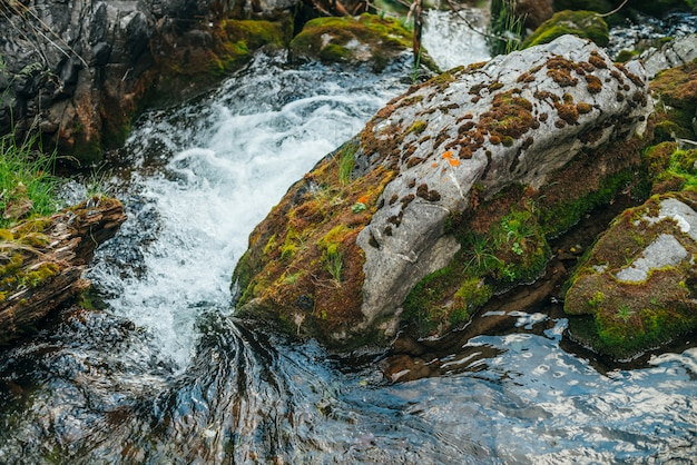 Szenische natur mit schönem moosigem felsbrocken im klaren quellwasser der bergbachnahaufnahme. natürlicher hintergrund mit großem stein mit moosen in transparentem wasser. schneller strom in kleinem fluss.