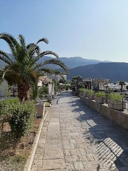 Szenischer panoramablick in montenegro. meer, palmen, strand. südeuropa.