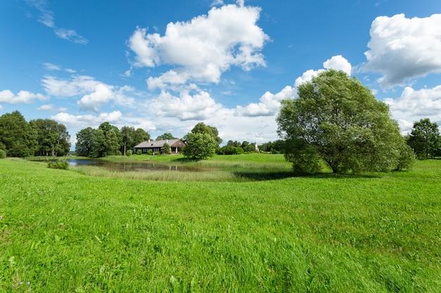 Szenisches landschaftspanorama mit grünem gras und blauem himmel.